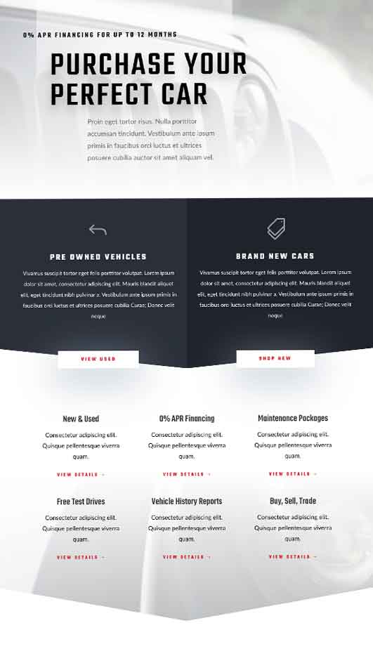 Detroit-Demo-Site Web Design & Development