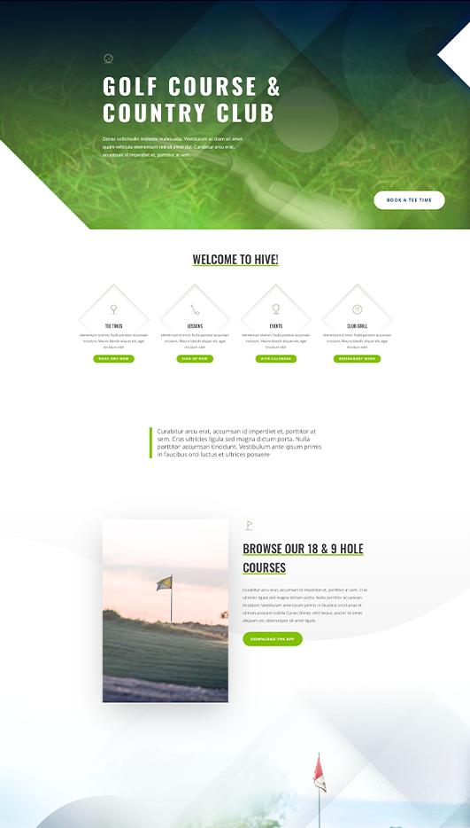 dubai Web Design & Development